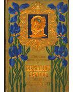 Kisfaludy Sándor összes költeményei I