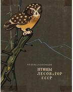 A Szovjetúnió erdeinek és hegyeinek madarai (Птицы лесов и гор СССР)