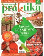 Praktika 2008. október 10. szám - Boda Ildikó (főszerk.)