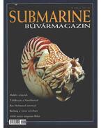 Submarine 2001. ősz