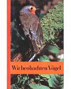 Wir beobachten vögel (Madarak megfigyelése)