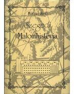 Szegedi Malomhistória