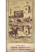 Török hódoltság Gyula térségében
