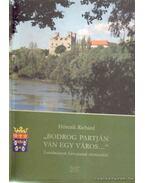 ''Bodrog partján van egy város...''