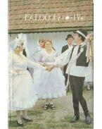 Palócok IV. kötet
