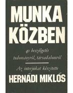 Munka közben - Hernádi Miklós
