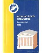 Hitelintézeti számvitel - Bankszámvitel 2002