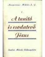 A tanító és csodatevő Jézus V.