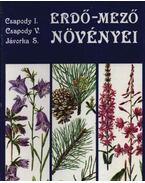 Erdő-mező növényei