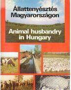 Állattenyésztés Magyarországon