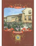 15 éve város Lajosmizse 1993-2008