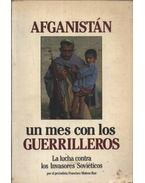 Afganistán... Un mes con los guerrilleros