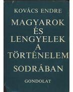 Magyarok és lengyelek a történelem sodrában
