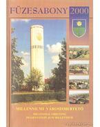 Füzesabony 2000