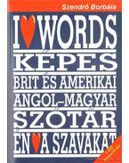 Brit és amerikai angol-magyar képes tanuló-szótár