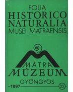 Mátra Múzeum, Gyöngyös 1997. 22.