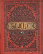 Képes családi lapok - huszonharmadik kötet, 1901-ik évfolyam