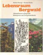 Lebenstraum Bergwald