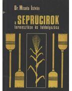A seprűcirok termesztése és feldolgozása
