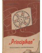 Principikon