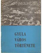 Gyula város története 1214-1964