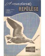 A madarak repülése 1967/2