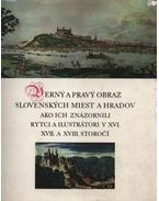 Verny a pravy obraz slovenskych miest a hradov, ako ich znázornili rytci a ilustrátori v XVI., XVII. a XVIII. storocí