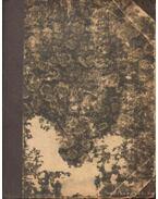 A leányvári boszorkány