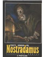 Nostradamus titokzatos könyve-A próféciák