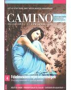 Camino 2012/3-4.