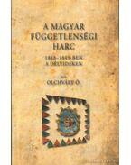 A Magyar függetlenségi harc 1848-1849-ben a délvidéken