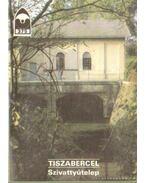Tiszabercel - Szivattyútelep