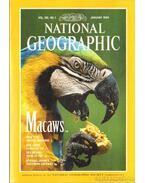 National Geographic 1994-es évf. Teljes! (angol nyelvű)