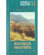 Bucsecs hegység