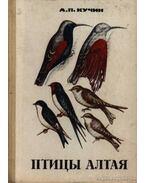 Altáj madarai (Птицы Алтая) (dedikált)