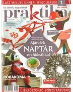 Praktika 2011. január 1. szám - Boda Ildikó (főszerk.)