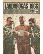 Labdarúgás 1966 - Szűcs László