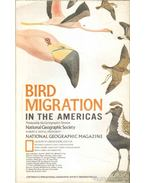 Bird Migration in the Americas