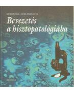 Bevezetés a hisztopatológiába