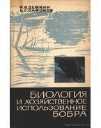 A hód gazdasági felhasználása és biológiája (Биология и хозяйственное исполь&#1079