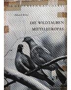 A közép-európai vadgalambok (Die Wildtauben Mitteleuropas)