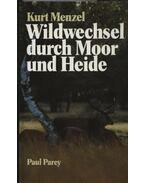Wildweschel durch Moor und Heide