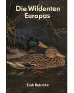 Die Wildenten Europas