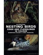 Nesting birds (Fészkelő madarak)