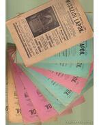 Missziói lapok - Külmisszió 1907. jan., márc., ápr., máj., jún., júl., aug., szept., okt., nov., dec.