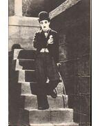 Chaplin - Ismertető füzet