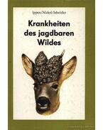 Krankheiten des jagdbaren Wildes (Vadállatok betegségei)