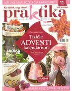 Praktika 2008. november 11. szám - Boda Ildikó (főszerk.)