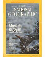 National Geographic 1990-es évf. Teljes! (angol nyelvű)