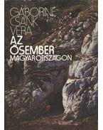 Az ősember Magyarországon